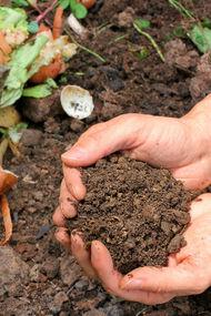 Kompost hazırlama ile ilgili merak edilenler