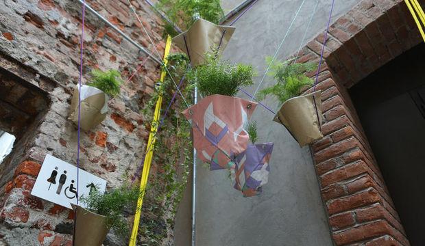 'Otlar, şehir ekolojisinin değerli aktörleri'