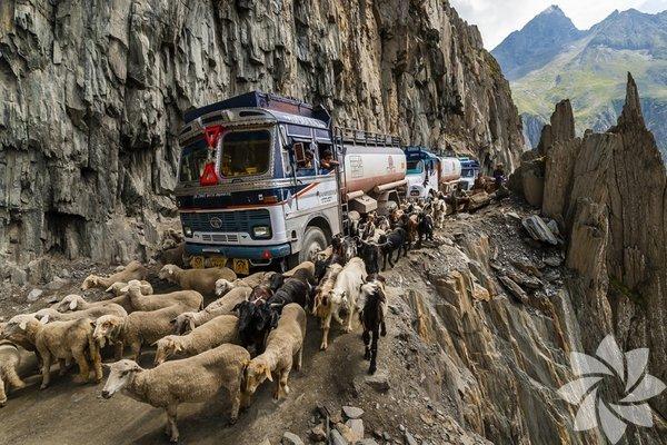 Kentten uzakta yavaş yavaş araba sürerek yolun keyfini çıkarmak gibisi yoktur. Bu yollarda bir yerlere yetişmeye çalışan ve yarışan arabalarla karşılaşmazsınız. Kırsal alandaki bu yollar size huzur verir ama kimileri de oldukça tehlikelidir. Tehlikeli bir yolda sürmeyi başka bir şeyle kıyaslamak oldukça zordur. Zoji La, Hindistan Ladakh ve Kashmir 9 km uzunluğundaki bu uzun yolla birbirine bağlı. Bu yol her şeyden önce gerek hayvanlar için gerekse araçlar için oldukça dar bir yol.