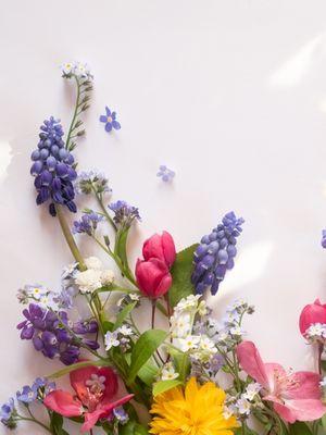 Hangi çiçeğe benziyorsunuz?