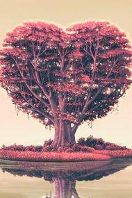 Aşkla gelen 5 sihirli değişim