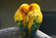 Dengeli ve uzun soluklu bir ilişki için...