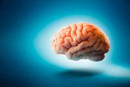Beyin ile bilgisayar arasındaki en önemli fark...
