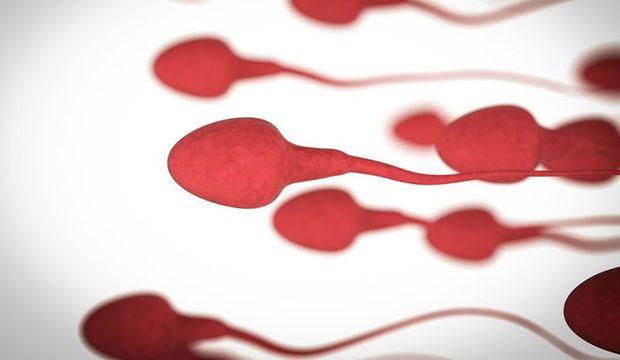 Sperm sayınızı cep telefonunuzla ölçebilirsiniz