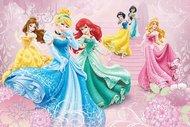 Disney Prensesleri hakkındaki ilginç bilgiler