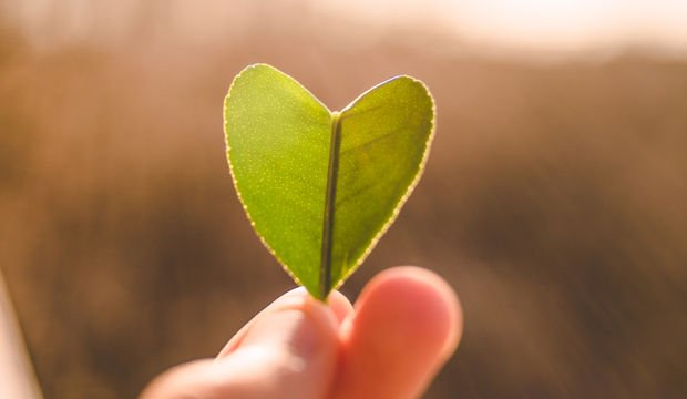 Kalbinize iyi bakın!