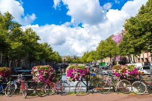 Şehrin ilkbaharla ve bisikletle aşkı: Amsterdam