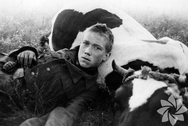Gel ve Gör 1985 (Idi i smotri)  Yönetmen: Elem Klimov 1943 yılında Rusya'yı işgal etmek isteyen Almanlar Belarus'a kadar gelirler. Yurdunu savunmak isteyen 14 yaşında bir erkek çocuğu gönüllü olarak savaşa katılır. Gelmiş geçmiş en sert ve çarpıcı savaş filmlerinden biri... Belarus'ta yaşananları gerçek tanıklıklar üzerinden yeniden canlandıran Klimov, kahramanlık ve direnişi yücelten Sovyet savaş filmleri geleneğini bir yana bırakıp savaşın masumiyeti yok eden dehşetine odaklanıyor.