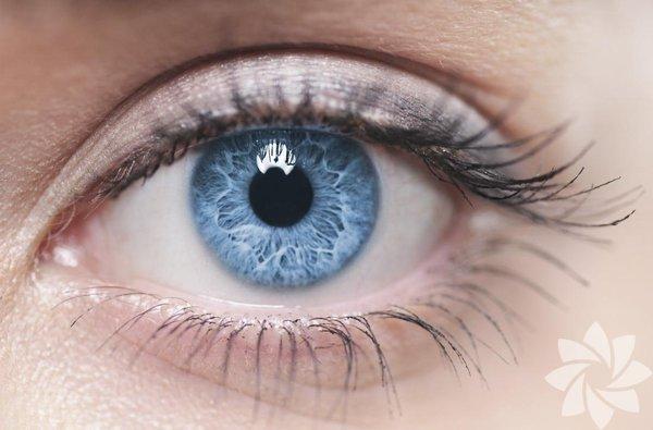Vücudun kan kaynağı olmayan tek bölümü, gözdeki korneadır. Oksijeni doğrudan havadan alır.