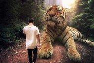Büyük hayvanlar küçük insanlar