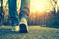 Yürüyüş batonları ve kurallar