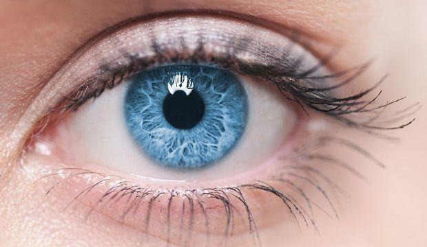 göz ile ilgili görsel sonucu