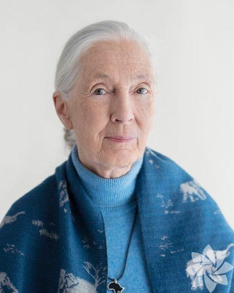 Jane Goodall Primatolog ve çevreci Gezegenimizin geleceği benim için çok önemli. Yerli insanlar olarak, 'Bu karar gelecek nesile ne yarar sağlayacak?' sorusunu sormalıyız. Ben 10 yaşındayken, Tarzan kitabını okudum ve büyüdüğümde vahşi hayvanlarla yaşayıp onlar hakkında kitap yazmak için Afrika'ya gitmeye karar verdim. Herkes bana gülerken annem, eğer bir şeyi istiyorsam ondan asla vazgeçmememi söyledi. İnsanlar şimdi 'Neden biraz yavaşlamıyorsun? Artık 83 yaşındasın' diye soruyor, fakat farkındalık yaratmamız gereken çok şey var. İletişim gibi bir yeteneğimiz var ve buna hala sahipken devam etmek istiyorum. Her yaşayan canlı önemlidir. Umarım bazı şeyleri değiştirmek için hala zamanımız vardır.