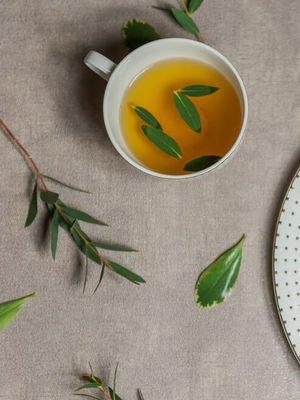 Enginar çayı nasıl yapılır?