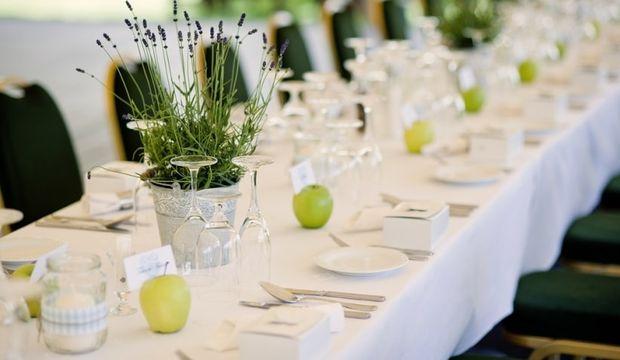 Organik düğün nasıl olur?