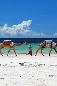 Dünyanın en iyi 50 plajı