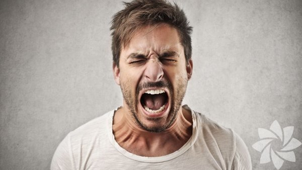 Koç: Ateş grubu olduklarından çok çabuk öfkelenirler. Öfkeleri de oldukça yıkıcı olur. Bağırıp çağırılar, yıkıp dökme eğilimi gösterebilirler. Kızgınlıkları da öyle kolay kolay geçmez.