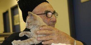 Herkes Ali Dede ve kedisini konuşuyor!
