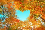 Olumlu düşünme kanserin seyrini etkiliyor
